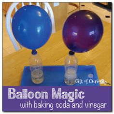 magic Balloon magic - a fun science activity where you inflate a balloon using baking soda and vinegar.Balloon magic - a fun science activity where you inflate a balloon using baking soda and vinegar. Science Party, Science Activities For Kids, Kindergarten Science, Elementary Science, Physical Science, Science Classroom, Science Fair, Teaching Science, Science For Kids