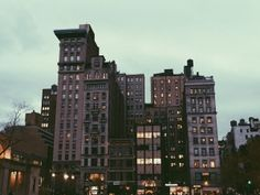 New York  instagram.com/wildfox