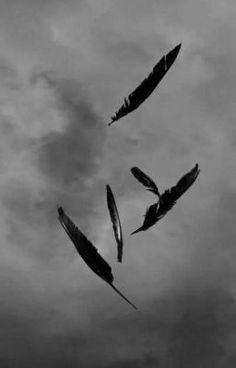 Black Feathers in the Storm Gothic Aesthetic, Gray Aesthetic, Angel Aesthetic, Black And White Aesthetic, Black Aesthetic Wallpaper, Aesthetic Wallpapers, Dark Fantasy, Angels And Demons, Black Feathers