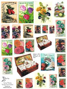 Victorian Seed Packets | Spring Planting Vintage Seed Packets Collage Sheets