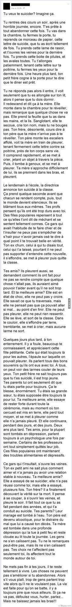 Le Suicide – Québec Meme +