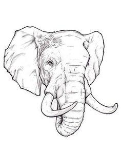 Resultado de imagen para elephant face drawing