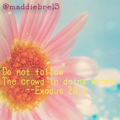 Exodus 23:2.  #bibleverse #exodus #pretty #flower #myedit #imbored #ducks #won #wootwoot bibleversememes.com Thy Word, Word Of God, Bible Verses About Friendship, God Is Amazing, Psalms, Psalm 119, Favorite Bible Verses, Lord And Savior, Gods Grace