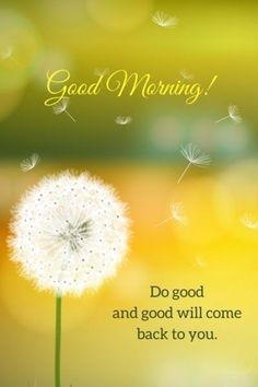 cool Good Morning Quotes: Life sayings Good Morning Do Good and Good will Come Back