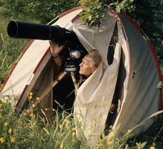 Heinz Sielmann bei Dreharbeiten in der Natur. 1994 gründete er gemeinsam mit seiner Frau Inge die Heinz Sielmann Stiftung.