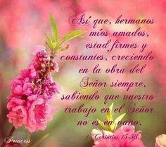 ~1Coríntios 15:58~