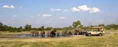 Savute Elephant Camp  Safari Camp Chobe National Park, Botswana