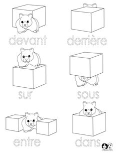 Position Words - French Printout