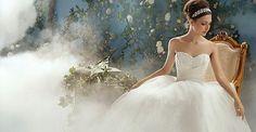 Disney Wedding Dreams