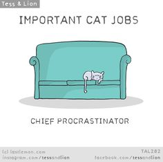 Important Jobs Cats Do Every Day - World's largest collection of cat memes and other animals Crazy Cat Lady, Crazy Cats, Last Lemon, Lion Cat, Cat Info, What Cat, Cat Crafts, Cat Dad, Hearts