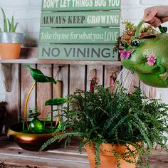 Bring your garden to life this spring with fun creatures and plant decor from the Cracker Barrel Old Country Store.