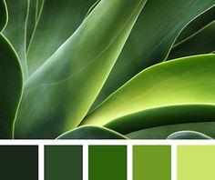 Harmonie vert plante I Design I Couleur I Inspiration I Camaïeu I Peinture I Color Harmony, Color Balance, Green Colour Palette, Green Colors, Taupe Colour, Black Colors, Verde Greenery, Design Seeds, Colour Board