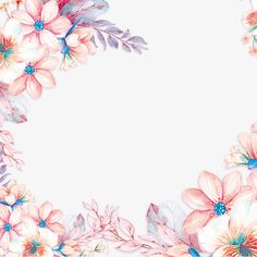 Flowers Background, Frame Background, Floral Backround, Flower Boxes, Flower Frame, Clover Plant, Spring Plants, Hand Drawn Flowers, Vector Flowers