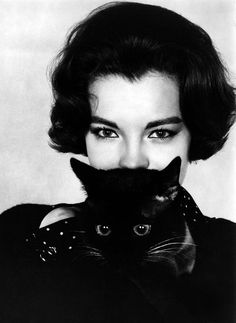 Completely having kittens.with Romy Schneider - and christmas with Alain Delon Romy Schneider, Crazy Cat Lady, Crazy Cats, I Love Cats, Cool Cats, Patricia Highsmith, What's New Pussycat, Son Chat, Photo Chat