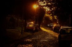 #gdansk #ilovegdn #oliwa #gdanskikalendarz #gdanskcalendar  fot. Marta Rosa / Sierpień