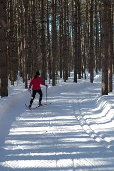 Hiawatha Park in Sault Ste. Reportedly the best cross country skiing in North America. Ski Vacation, Vacation Places, Outdoor Fun, Outdoor Camping, Colorado Ski Resorts, Skiing Colorado, Ontario, Sault Ste Marie, Nordic Skiing