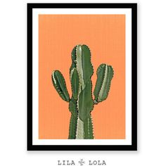 Cactus Print, Orange,Terracotta, Mexican, Arizona, South Western,... ($6.30) ❤ liked on Polyvore featuring home, home decor, wall art, backgrounds, cactus home decor, aztec wall art, orange wall art, cactus wall art and wall home decor