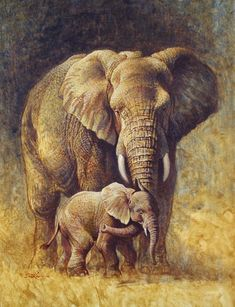 a handsome elephant father, a beautiful elephant mother (interacting with the young elephant) and their impressive son (painting) ~ highly artistic ~ classic ~ (completely) realistic ~ my entire generation as parents in the tribe Elephant Love, Elephant Art, Elephant Tattoos, African Elephant, Wildlife Paintings, Wildlife Art, Animal Paintings, Animal Drawings, Elephant Paintings