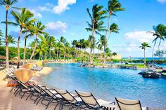 There's always a spot in the sunshine waiting for you at Grand Hyatt Kauai Resort & Spa in Hawaii! Apple Vacations click image to find a travel advisor near you Grand Hyatt Kauai, Kauai Resorts, Trip Advisor, Travel Advisor, Apple Vacations, Adventure Awaits, Hawaii Travel, Resort Spa, Waiting