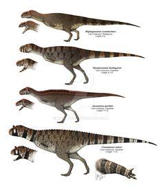 Some abelisaurid dinosurs by Kana-hebi on DeviantArt Dinosaur Sketch, Dinosaur Drawing, Dinosaur Art, Dinosaur Fossils, Prehistoric Wildlife, Prehistoric Creatures, Creature Concept Art, Creature Design, Dinosaur Skeleton