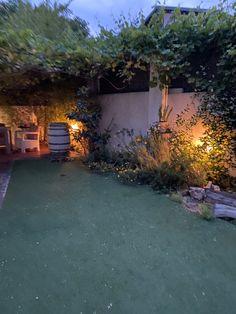 Summer Nights, Astroturf, Gardens, Pictures