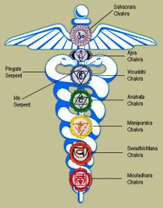 The Spirit Science | Earth's kundalini: Questions answered can be represented as a serphent and on it is the 7 main chakras