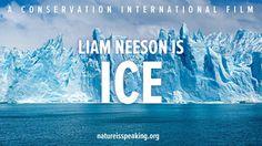 """Liam Neesons Stimme ist zum Dahinschmelzen - aber in diesem Video der Organisation """"Conservation International"""" ist er die Stimme des schmelzenden Eises. Schon andere Stars haben der Organisation ihre Stimme geliehen, z.B. Julia Roberts als """"Mother Nature"""" oder Harrison Ford als """"Ocean""""."""