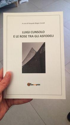 Luigi, Polaroid Film