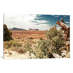 """East Urban Home Desert Nature Photographic Print on Wrapped Canvas Size: 18"""" H x 26"""" W x 0.75"""" D"""
