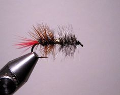 Jay's McKenzie Guide Secret — Classic Trout Attractor Pattern fly tying video | The Caddis Fly: Oregon Fly Fishing Blog