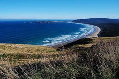 The windswept Catlin Coast, on the very southern tip of the South Island, will remain windswept, breathtaking, potentially life changing without you. | 25 Places In New Zealand That Do Not Care If You Travel There