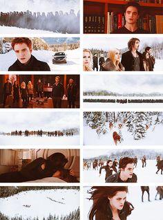 'Breaking Dawn Part Twilight Scenes, Twilight Cast, Twilight Photos, Twilight New Moon, Twilight Movie, Great Love Stories, Love Story, Breaking Dawn Part 2, Strong Love