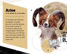 Horóscopo Canino según el Reiki #Aries #Revista #SeBuscaPerroExtraordinario