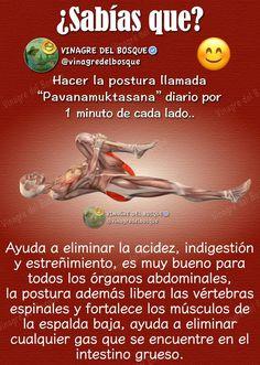 Kundalini Yoga, Yoga Meditation, Yin Yoga, Pilates Workout, Pilates Reformer, Eco Slim, Yoga Anatomy, Yoga Mantras, Easy Yoga Poses