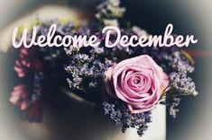 Ramalan Bulanan Desember 2017