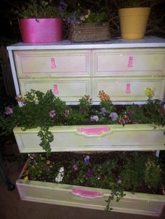luved making this from an old free curbside dresser into one of the cutest things in my yard