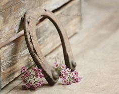 Rustic Photography, Equestrian Photography, Horseshoe Art Print, Farmhouse Decor, Horse Decor, Cottage Chic Vintage Style |'Old Shoe'