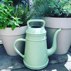 Tuin inspiratie | 6x tips tuinplanten water geven