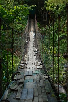 hanging bridge near Arenal Volcano, Costa Rica by Phil Marion, via Flickr