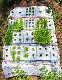 """Nourishmat es la plantilla ideal para huertos urbanos. Esta """"alfombra"""" te permite ordenar vegetales y flores, según las casillas de su diseño."""