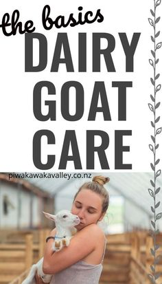 The popularity of goat's milk is on the rise as more and more people learn of its benefits. If you are new to raising dairy goats, here is what you need to know to get you started. Keeping Goats, Raising Goats, Mini Goats, Goat Pen, Goat Care, Boer Goats, Introducing Solids, Hobby Farms, Chickens Backyard