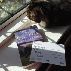 The Last Pier with cat in a window Window, Cat, Cover, Happy, Books, Libros, Book, Cat Breeds, Blanket
