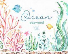Ocean. Seaweed. Underwater watercolor clip art, water plants, seaware, fishes, starfish, sea, nautical, undersea, aquarium, babyshower, alga