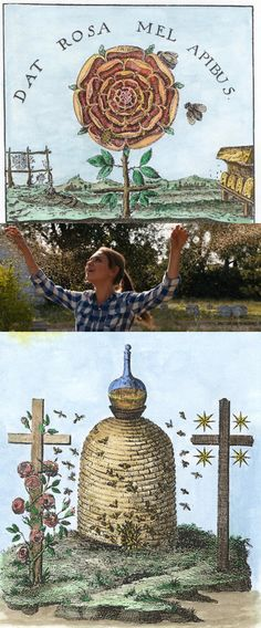 The Eleusinian Mysteries and the Bee Persephone, Aphrodite, The Rite, Bee Art, Connect The Dots, Ancient Symbols, Greeks, Fertility, Mythology
