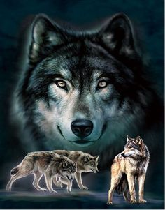 Xus Home Decor Wolf Love Lenticular 3D Picture Animal Poster Painting Home Decor Wall Art Decor ** Want additional info? Click on the image. (This is an affiliate link)
