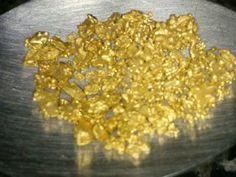 Pepitas de ouro foram pegas em garimpo (Foto: Júlio Cezar Ferreira de Souza/ Arquivo pessoal)
