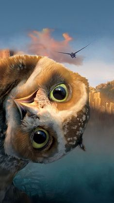 "Who is smarter, prettier, or can fly faster and higher: black birds, blue birds, purple birds, parrots, or owls?!  The wise ole owl says, ""Yada yada yada, whooo gives a hoot!"""