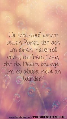 Wunder?!