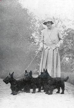 Scottish terriers, 1934