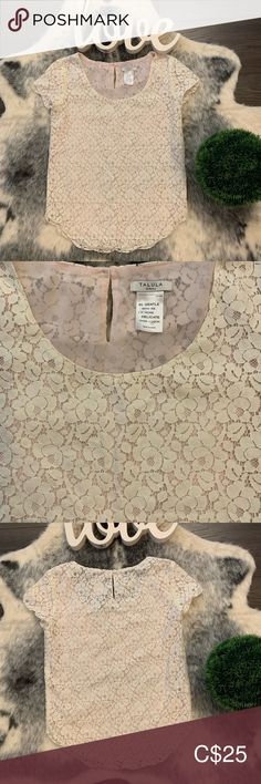 Talula Short sleeve lace shirt cream coloured lace with beautiful pink lining. Such a great addition to any closet to instantly add a feminine touch any outfit Talula Tops Short Sleeves, Feminine, Touch, Cream, Best Deals, Lace, Pink, Closet, Shirts